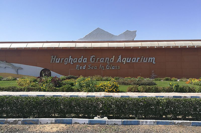 Things to do in Hurghada Egypt